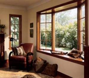 residential window film northglenn