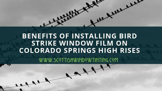 Benefits of Installing Bird Strike Window Film On Colorado Springs High Rises