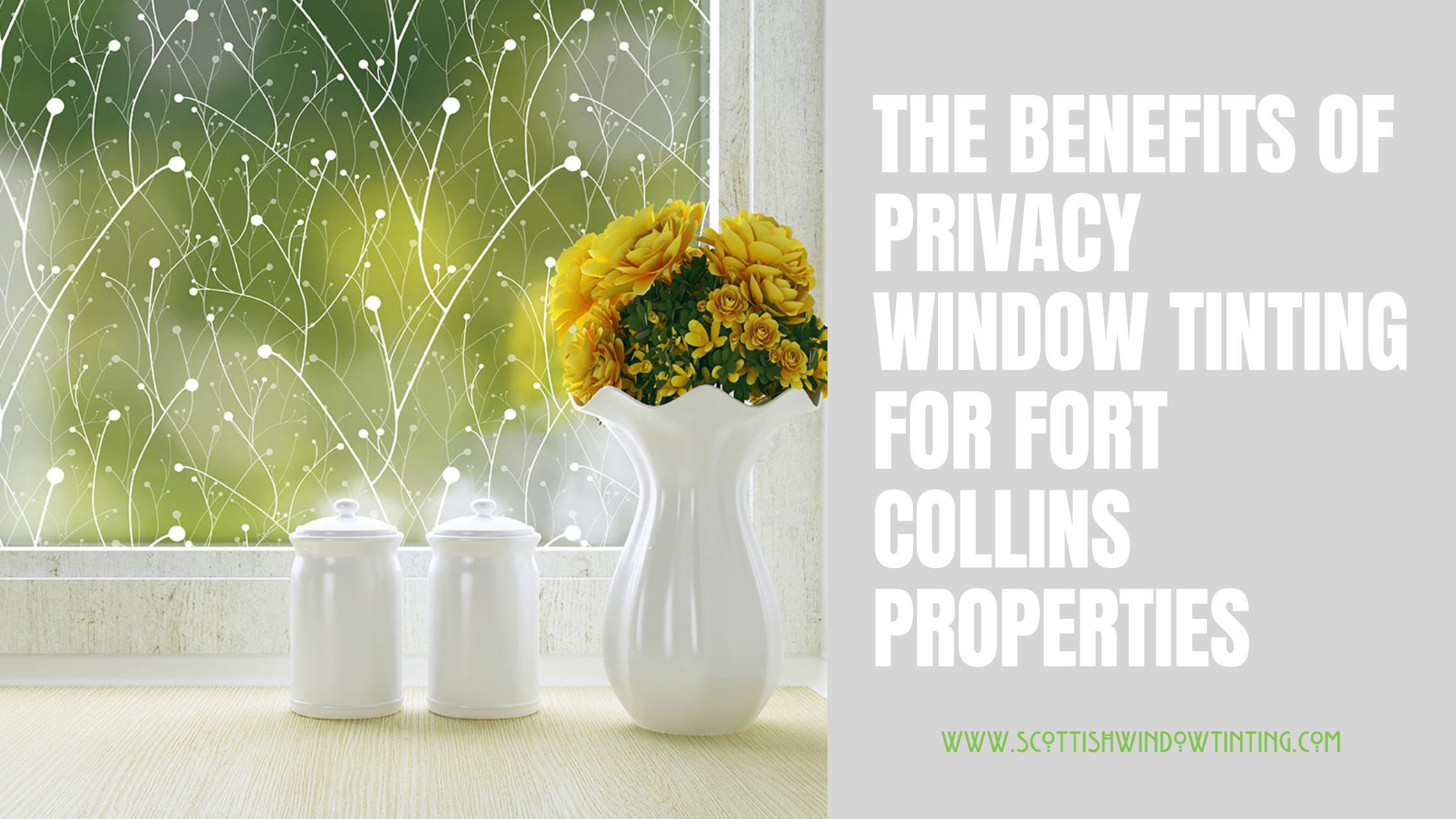 The Benefits of Privacy Window Tinting for Fort Collins Properties