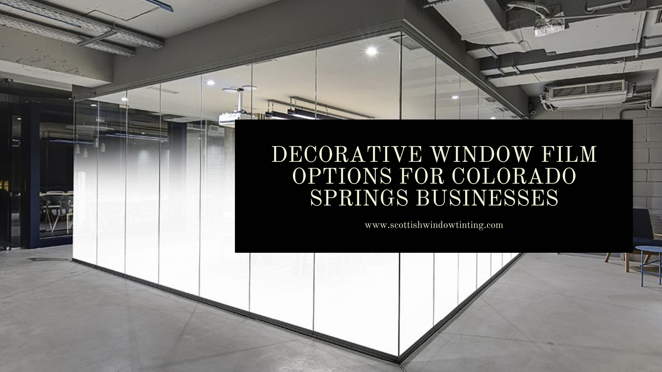 Decorative Window Film Options for Colorado Springs Businesses