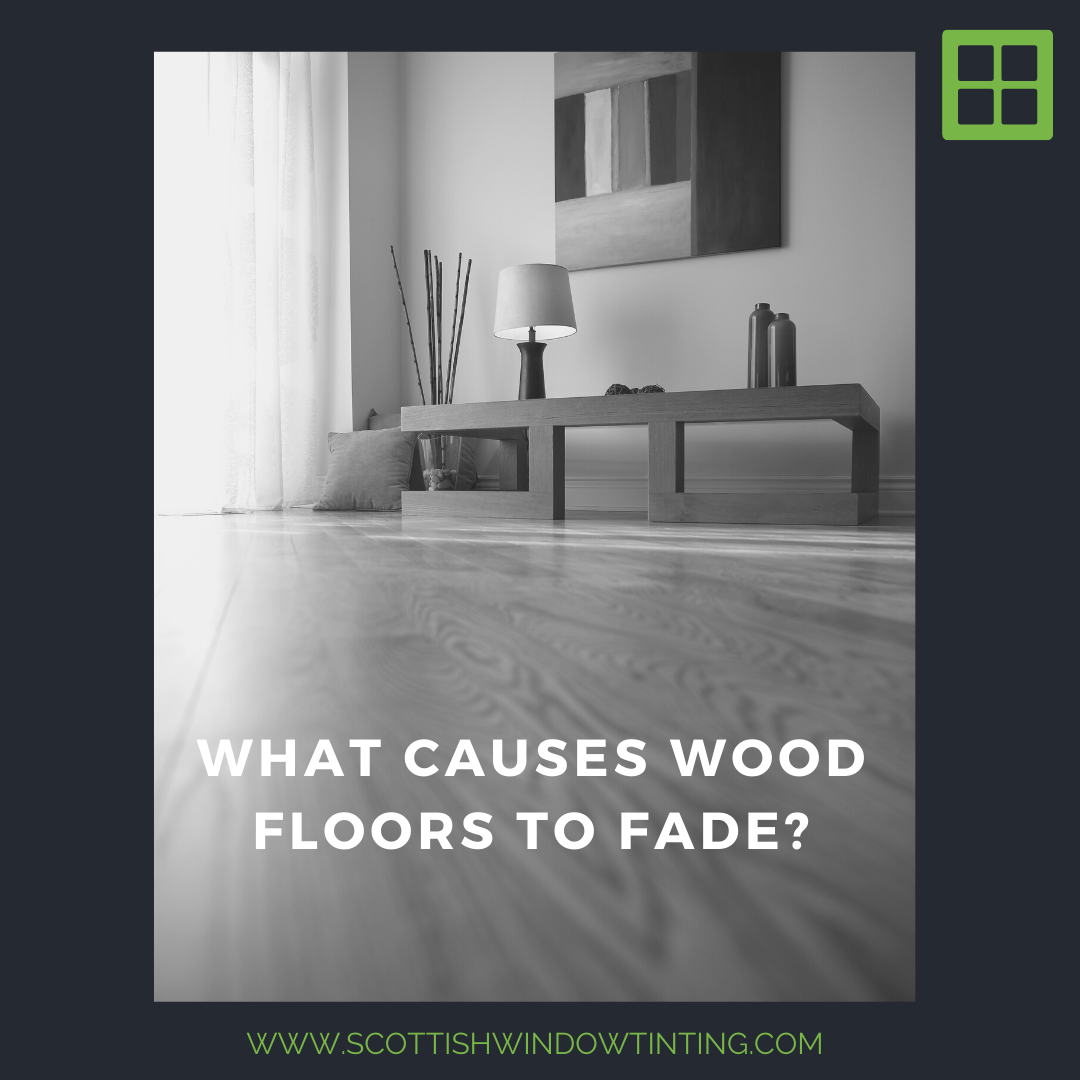 What Causes Wood Floors To Fade?